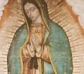 Conselho Episcopal Latino Americano convida para o Dia Continental de Oração pela Paz, em 12 de dezembro