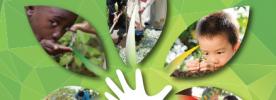 Outubro - Mês das Missões: Campanha Missionária aborda cuidado com o meio ambiente