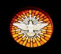 Jovens e adultos serão crismados na Catedral