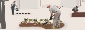 Repam-Brasil lança série de vídeos sobre agroecologia, economia solidária e consumo consciente na Amazônia Brasileira